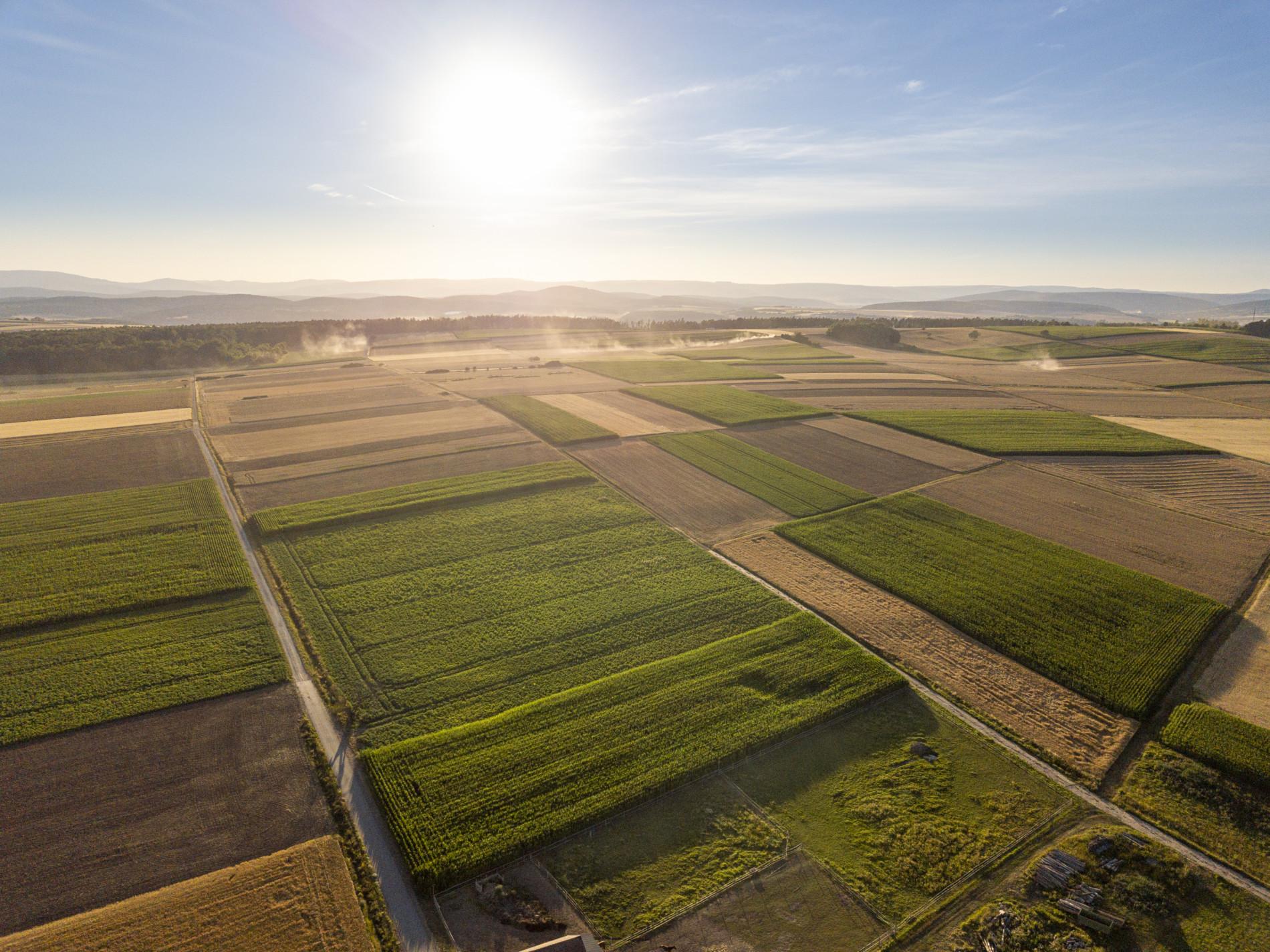 Zwischen Oberstreu und Bastheim. Sonnenaufgang über der Streutalallianz (Foto: Leska Wunderwelt)